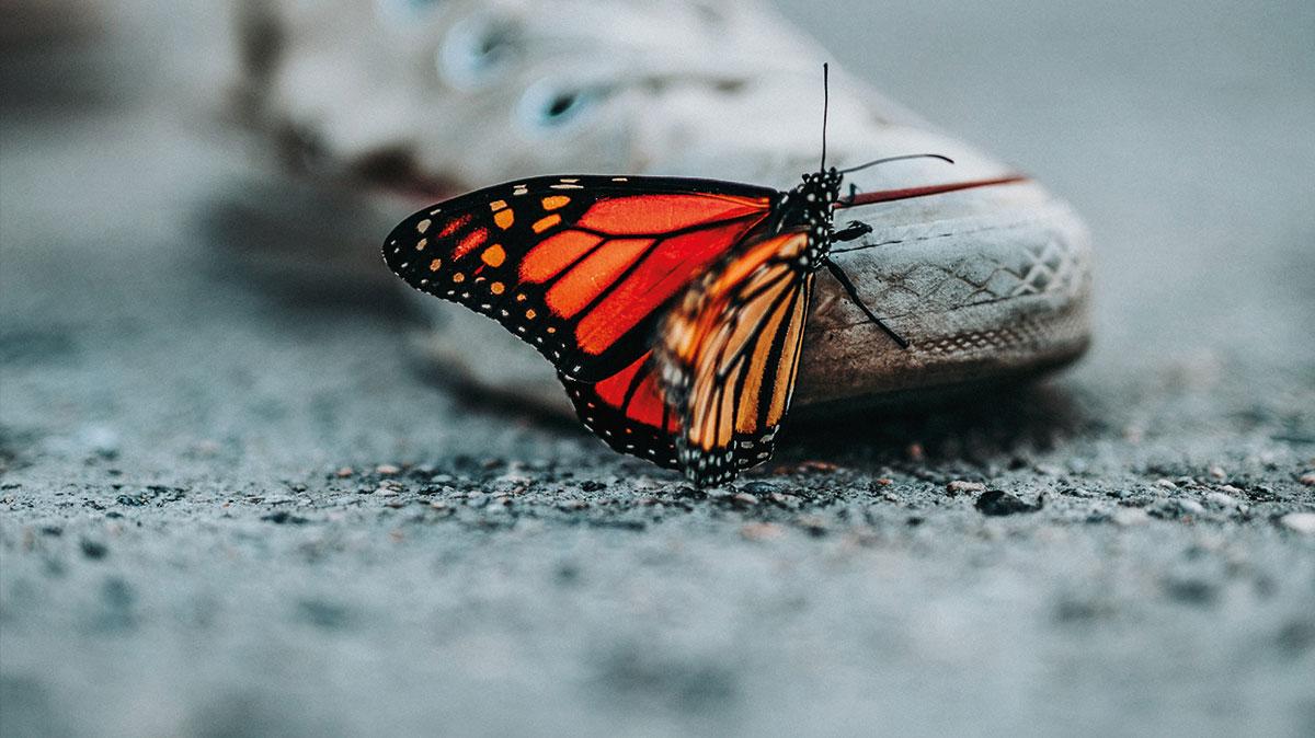 Blog: Die bittere Wahrheit über Perfektion