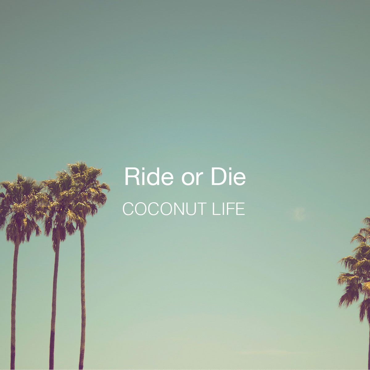 Ride-or-Die
